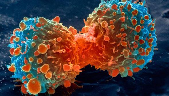 Ofensywa na raka